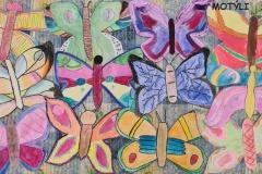 Motýli-žáci-6.A