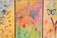 Motýli-rostliny-8-1